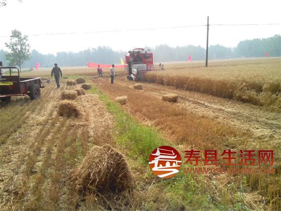 临漳新闻小麦被烧毁_临漳梁村新闻_临漳新闻